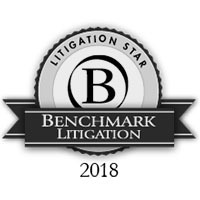 Benchmark Litigation 2018
